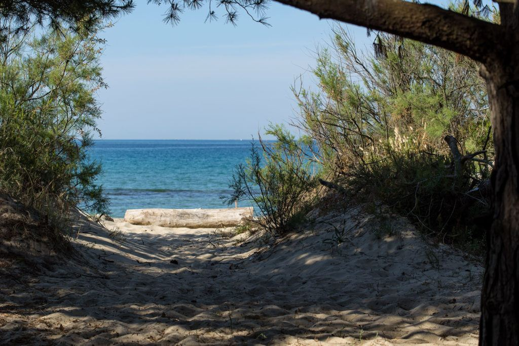 Trekking, Bike e Parchi Naturali in Toscana - Immobiliare Marina Salivoli